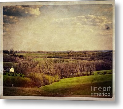 The Driftless Zone Metal Print by Mary Machare