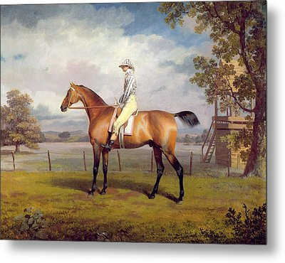 The Duke Of Hamilton's Disguise With Jockey Up Metal Print by George Garrard