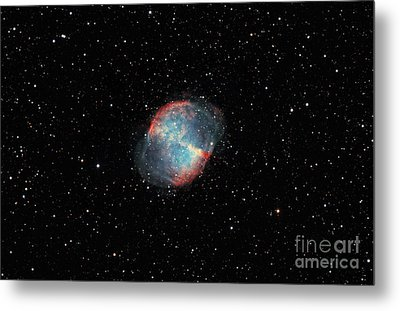 The Dumbbell Nebula Metal Print by Rolf Geissinger