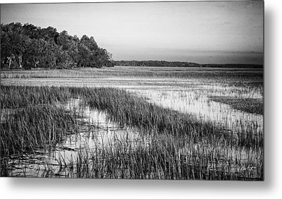 The Flats Metal Print by Phill Doherty