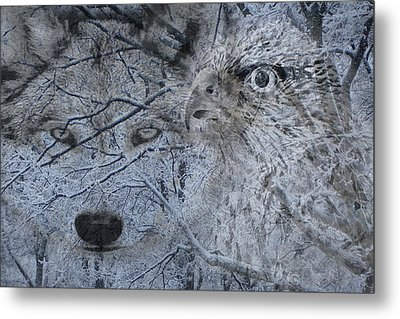 The Forest Has Eyes Metal Print by Yvonne Scott