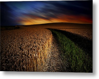 The Forgotten Path Metal Print by John Chivers
