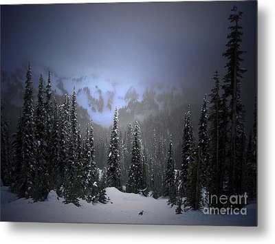 The Great Mystery  Metal Print by C E Dyer