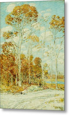 The Hawk's Nest Metal Print by Childe Hassam