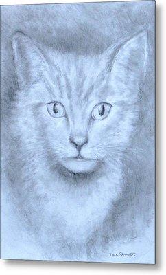 The Kitten Metal Print by Jack Skinner