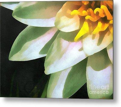 The Lily Flower Metal Print by Odon Czintos