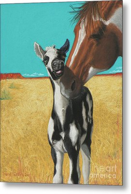 The Little Mustang Metal Print by Tracy L Teeter