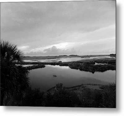 The Marshes Of St. Marks Metal Print by Judy Wanamaker