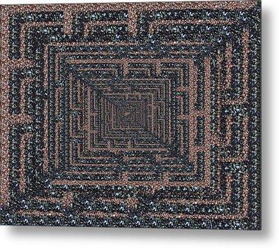 The Maze Metal Print by Tim Allen