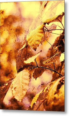 The Melody Of The Golden Rain Metal Print by Jenny Rainbow