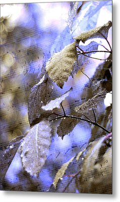 The Melody Of The Silver Rain Metal Print by Jenny Rainbow