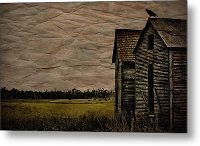 The Messenger  Metal Print by JC Photography and Art