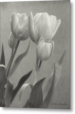 The Mirror Tulips Metal Print by Debra     Vatalaro