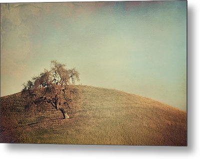 The Neverending Loneliness Metal Print by Laurie Search