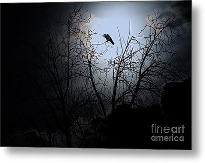 The Night The Raven Appeared In My Dream . 7d12631 Metal Print by Wingsdomain Art and Photography