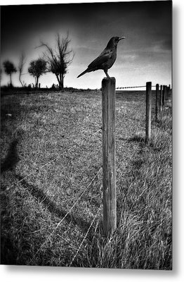 The Silent Warn  Metal Print by JC Photography and Art