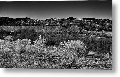 The South Platte Park Landscape II Metal Print by David Patterson