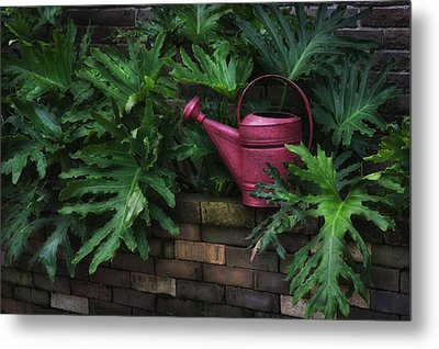 The Watering Can Metal Print by Brenda Bryant