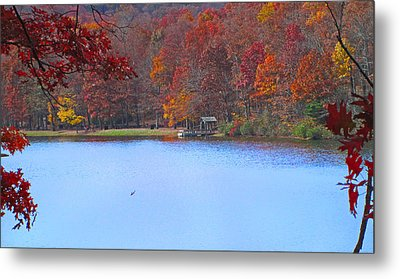 The Watershed Metal Print by Lynn Bauer