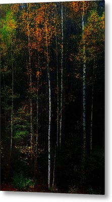 The Way To Glow From The Darkness Metal Print by Jenny Rainbow