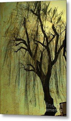The Willow Tree Metal Print by Susanne Van Hulst