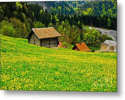 The Yellow Around Metal Print by Syed Aqueel