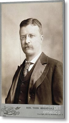 Thedore Roosevelt Metal Print by Granger