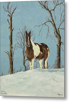 There Is A Season Metal Print by Mary Ann King