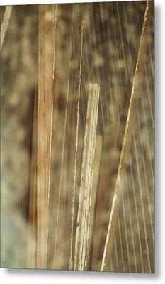 Thin Veil Metal Print by Todd Sherlock