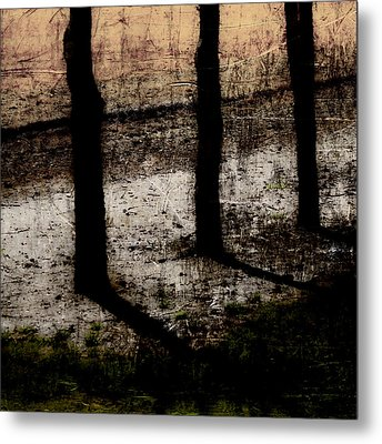 Three Tree Trunks Metal Print by Carol Leigh