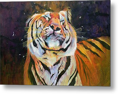 Tiger - Shaking Head  Metal Print by Odile Kidd