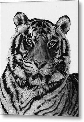 Tiger Metal Print by Jyvonne Inman