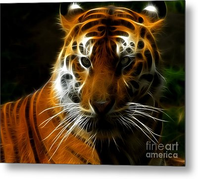 Tiger Portrait Metal Print by Katja Zuske