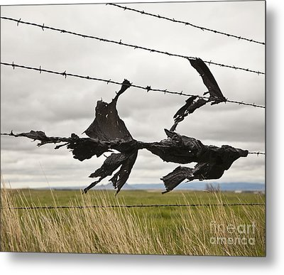 Torn Bags On A Barbed Wire Fence Metal Print by Paul Edmondson