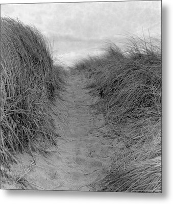 Trail Through The Sand Dunes Metal Print by Daniel J. Grenier