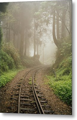 Train Tracks Found On The Forest Floor Metal Print by Justin Guariglia