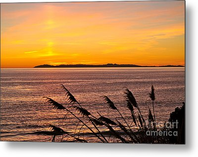 Tranquility  Metal Print by Johanne Peale