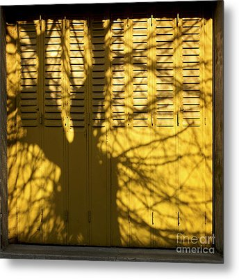 Tree Shadow Metal Print by Bernard Jaubert