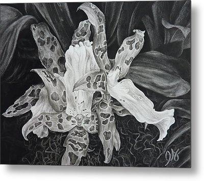 Triple Orchid Blossom Metal Print by Estephy Sabin Figueroa