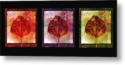 Triptych Leaves  Metal Print by Ann Powell