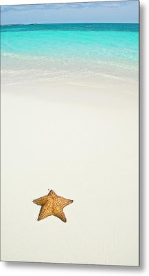 Tropical Beach And Starfish Metal Print by Mehmed Zelkovic