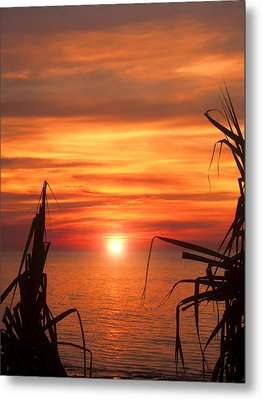 Tropical Sunset V6  Metal Print by Douglas Barnard