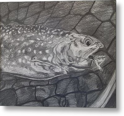 Trout In Net Metal Print by Michelle Grove