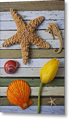 Tulip And Starfish Metal Print by Garry Gay