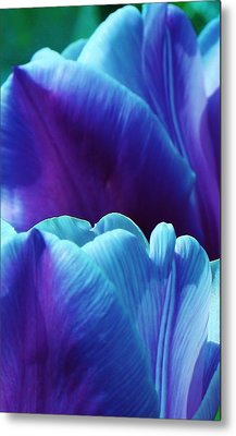 Tulips Of A Different Color Metal Print by Bruce Bley