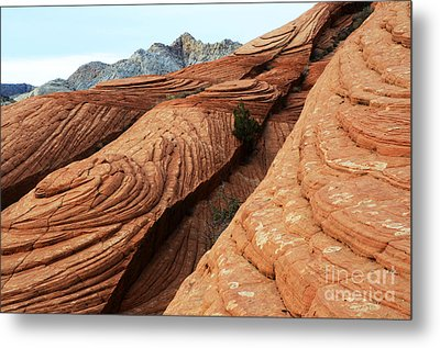 Twisted Landscape Metal Print by Bob Christopher