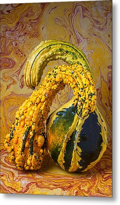 Two Gourds Metal Print by Garry Gay