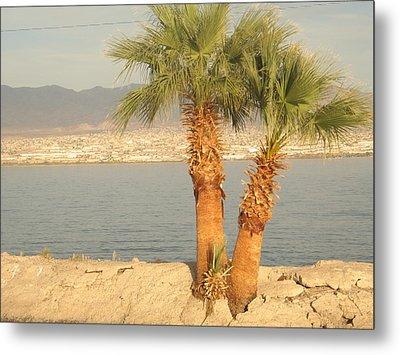 Two Palm Trees By A Lake Metal Print by Michaline  Bak