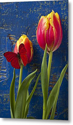 Two Tulips With Red Butterfly Metal Print by Garry Gay