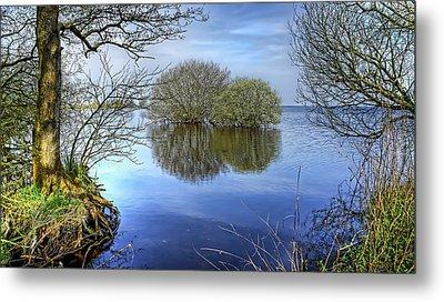Two Watery Trees  Metal Print by Kim Shatwell-Irishphotographer